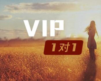 VIP一对一课程